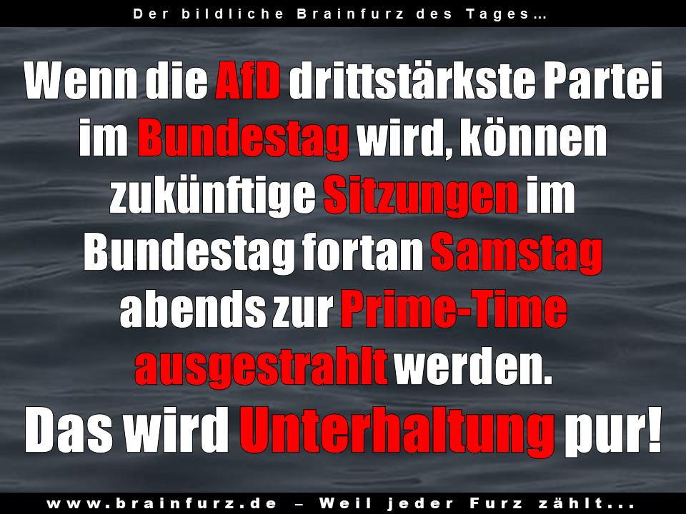 Wenn die AfD die drittstärkste Kraft in Deutschland wird...